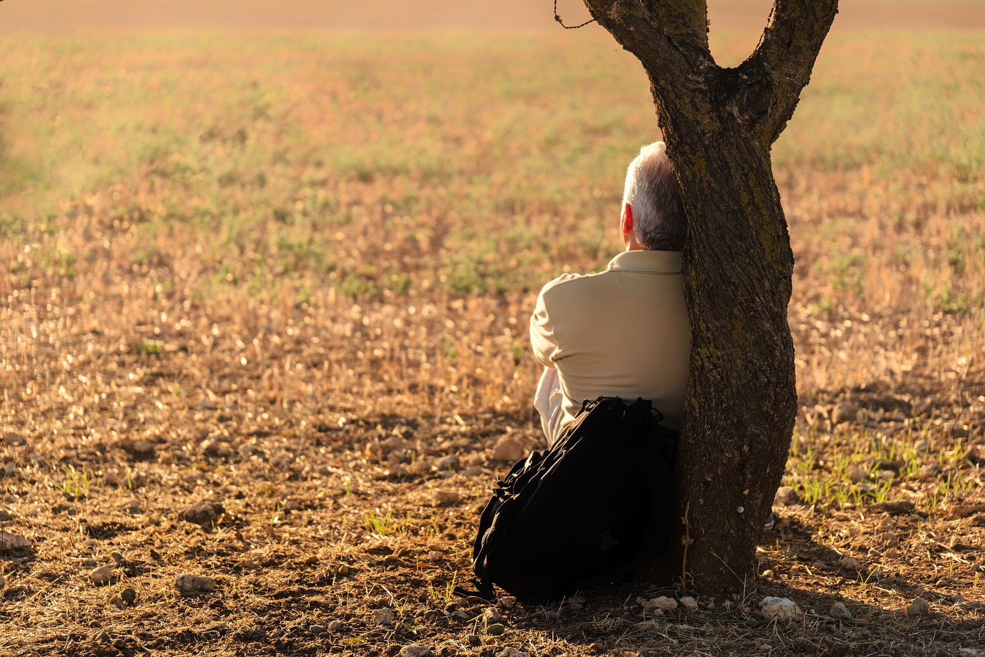¿Cómo percibe su entorno una persona con Alzheimer?