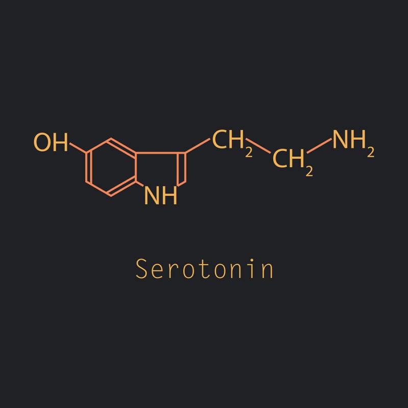 seretonina y Alzheimer